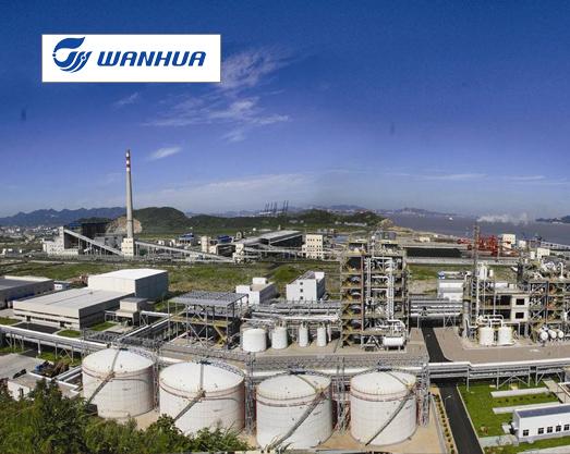 烟台万华化学集团股份有限公司 废气处理综合项目